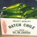 tn_hatch chile