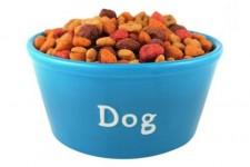 tn_dog_food