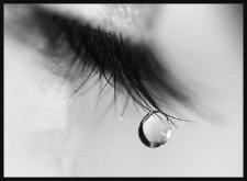 tn_tears