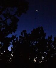 tn_daybreak