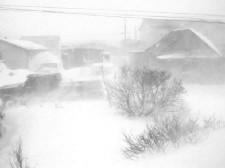 tn_7-blizzard-storm